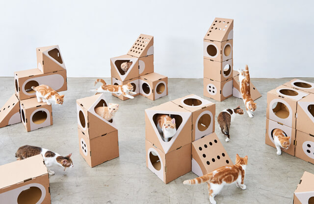 Modular Furniture For Your Cat Modscape