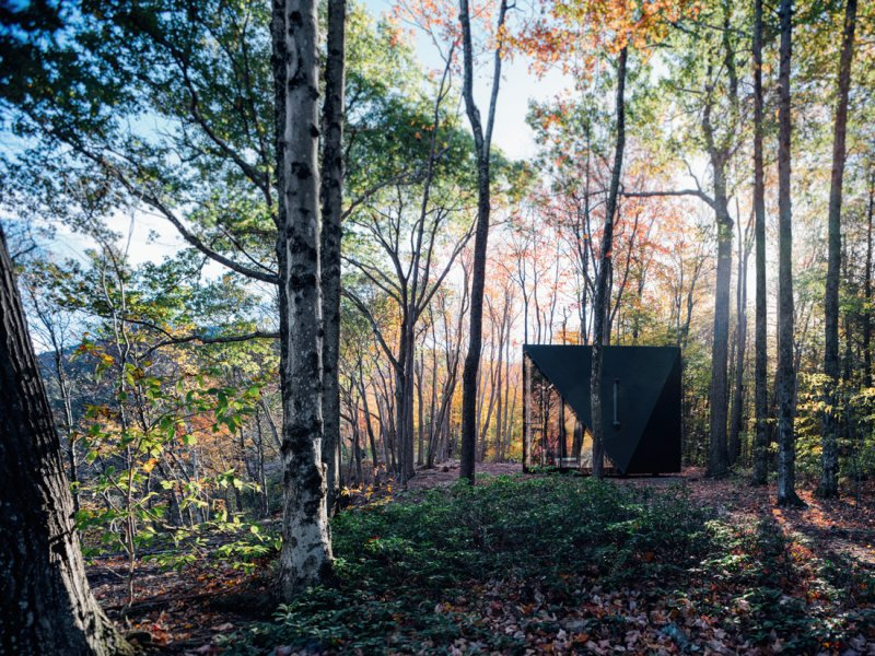 Hidden modular cabin in the woods at daytime